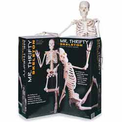 Mr. Thrifty Skeleton (Señor Esquelto Económico)