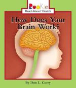 how-does-your-brain-work